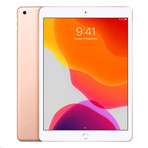 Apple iPad 10.2 7th Gen (Wi-Fi/Cellular) A2198